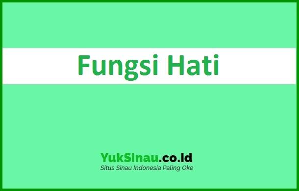 Fungsi Hati