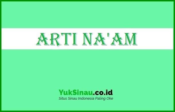 Naam Artinya