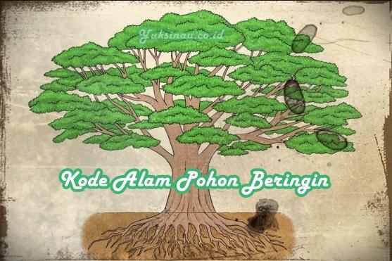 Kode Alam Pohon Beringin