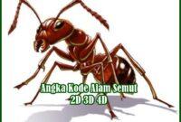 Angka Kode Alam Semut